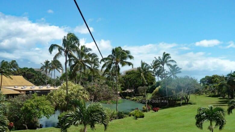 初心者でも安心して楽しめる!マウイ島の初心者向けジップラインをご紹介