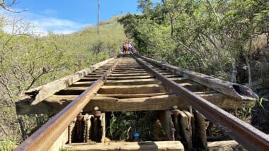 【在住者レポート】癖になるハワイで1番ハードなハイキング、「ココヘッドトレイル」の秘密
