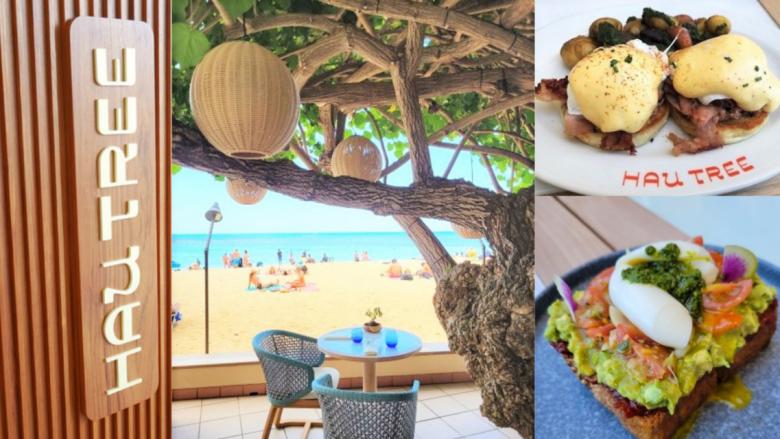 ハワイの空気を感じながら食事を満喫!新たにリニューアルオープンした「ハウ・ツリー」に行ってみた!