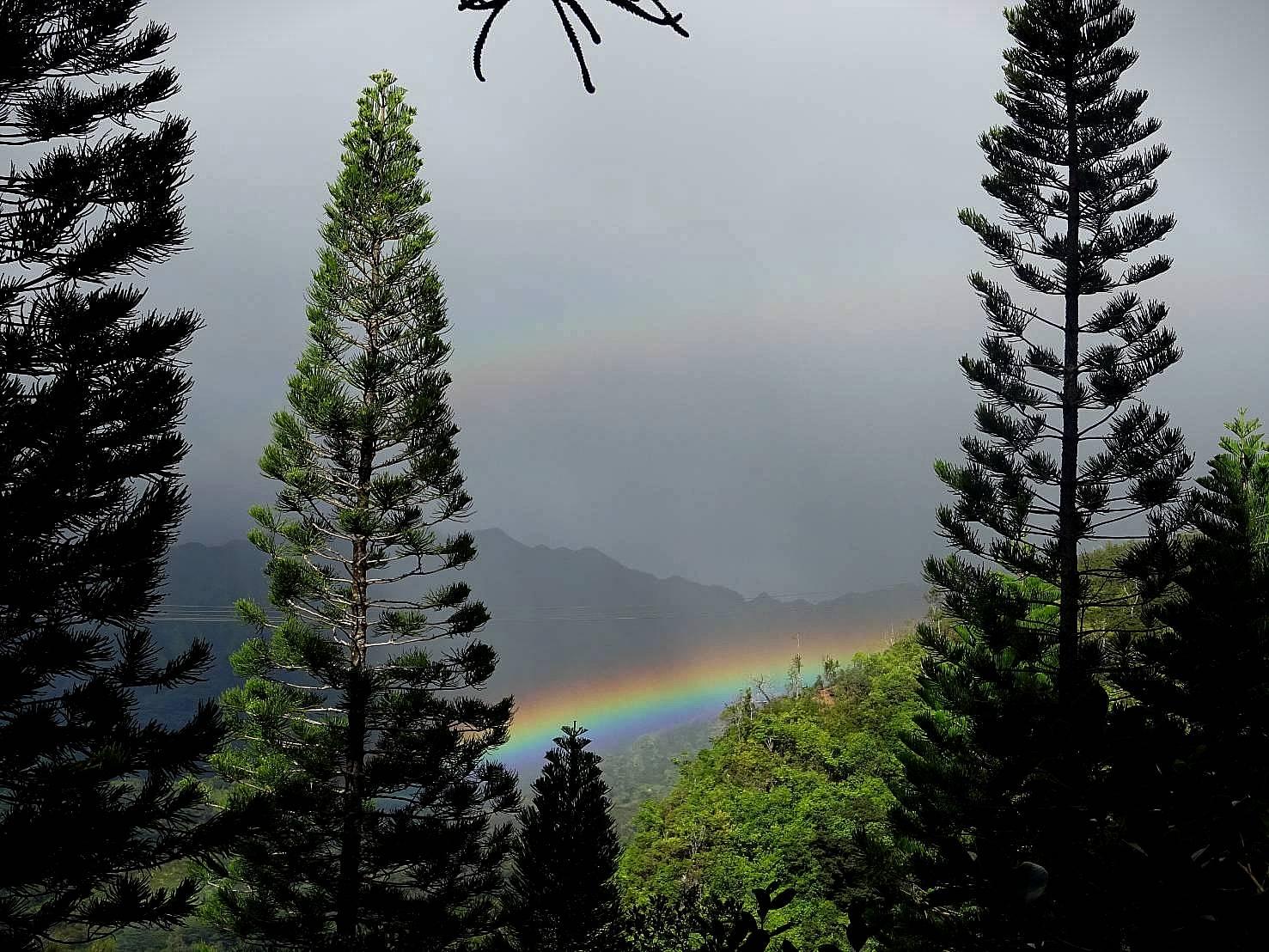 マノアの虹