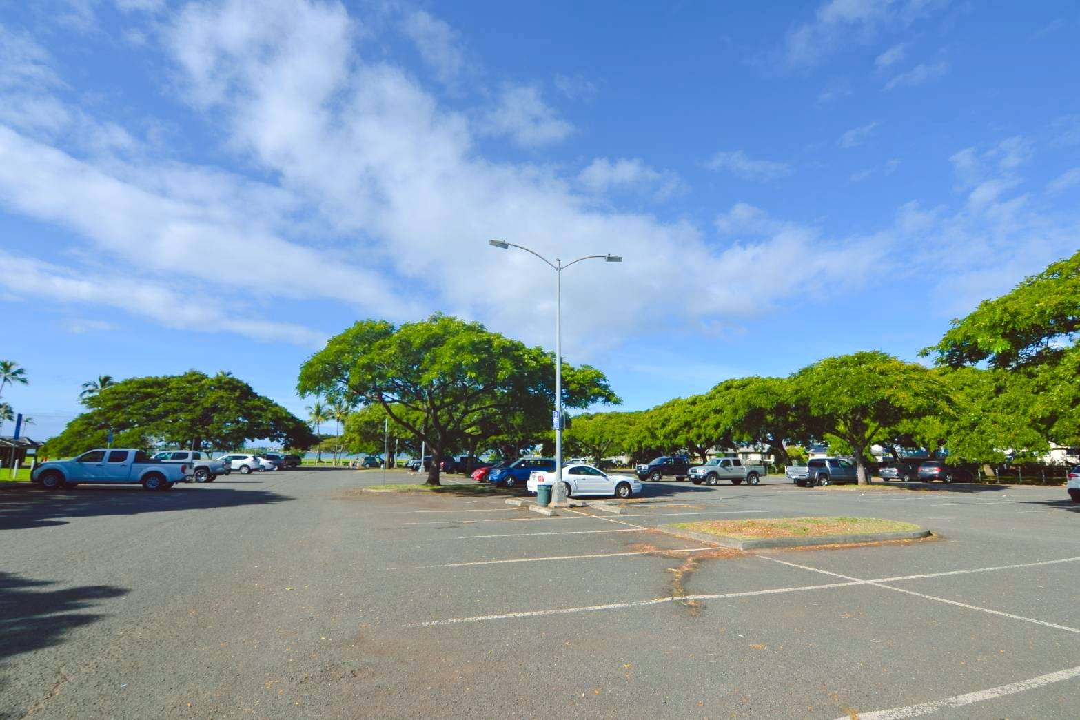 6公園駐車場