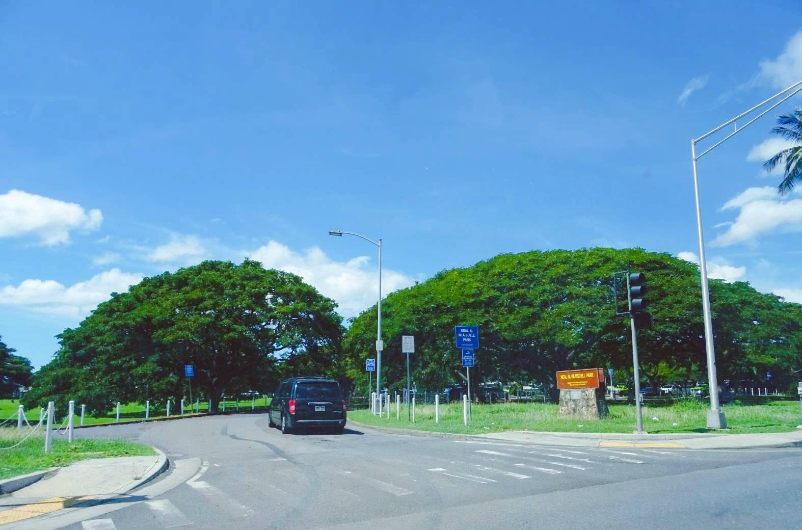 5公園入口