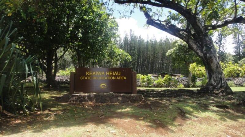 親子でハワイの大自然で楽しくトレッキング♪「ケアイヴァ・ヘイアウ州立公園」のアイエアループトレイルをご紹介!