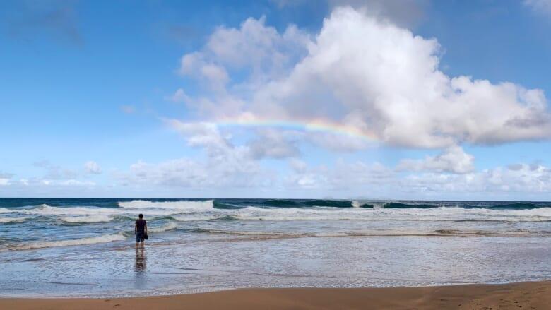 おいしく食べてハワイの海を守ろう♪ハワイのオーシャンフレンドリーなレストラン・カフェ5選