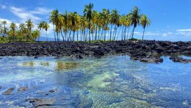 【在住者レポート】コロナ時代の初プチ旅行!ハワイ島の大自然に癒されてきました♪