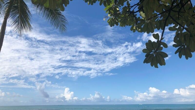 屋外でのマスク着用義務が無くなったハワイはどう変化した?住民の気持ちと観光客の気持ちに大きな溝