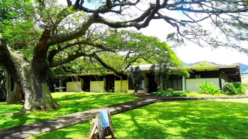 ハワイが舞台の小説も読める!ハワイの日本語図書館「天理文庫」で過ごす贅沢な時間