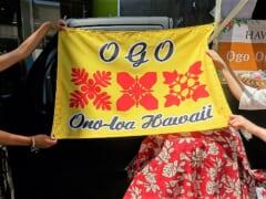 【日本で楽しめるハワイのグルメ】「オゴオノロアハワイ」でハワイアンフードはいかが?