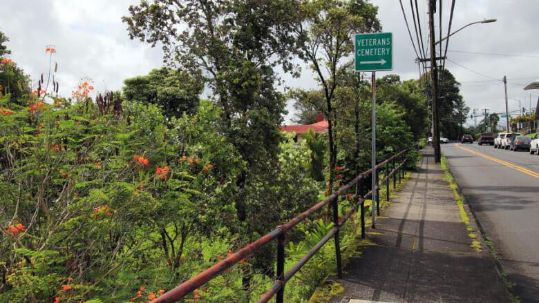 ハワイでも超レア!?ハワイ島ヒロの町に咲く珍しい色のオヒアレフアを見に行こう!