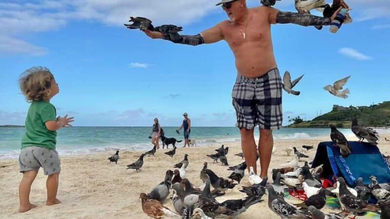 会えたらラッキー?!カイルアビーチでハトを操るおじさん「カイルアバードマン」!