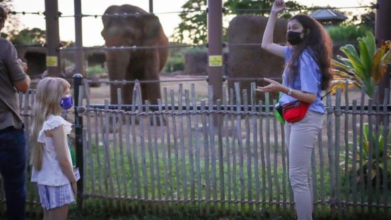 ホノルル動物園 トワイライトツアーの提供を再開