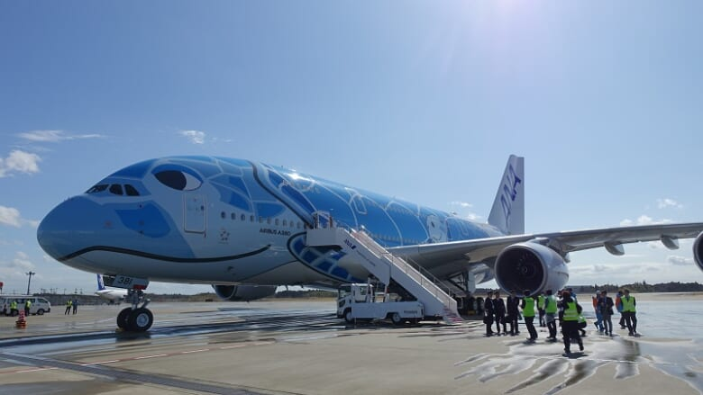 【締め切り間近】ANAのフライングホヌのチャーターフライトを8月に成田発着で計7回開催!
