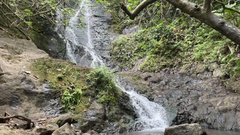 【特別映像付き】ハワイの滝に癒やされよう!初心者や子連れでも楽しめるリケケの滝トレイル