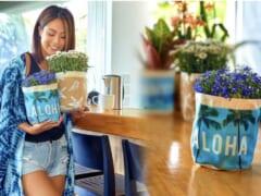 【在住者レポート】ハワイのホームセンター「シティミル」のハワイを感じる植木鉢カバー!
