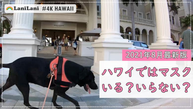 【4K HAWAII】ついにマスクなしのハワイに!?「ワイキキ」の気になる今をチェック!