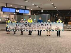 【搭乗体験記】ANAフライングホヌが1年5ヵ月ぶりに成田ーホノルルを2往復!気になる搭乗者数は?