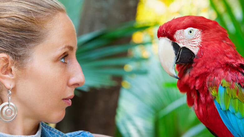 【ハワイ旅行前要チェック】知らなかった法律違反も!?ハワイの動物に関する決まりをもう一度確認しておこう