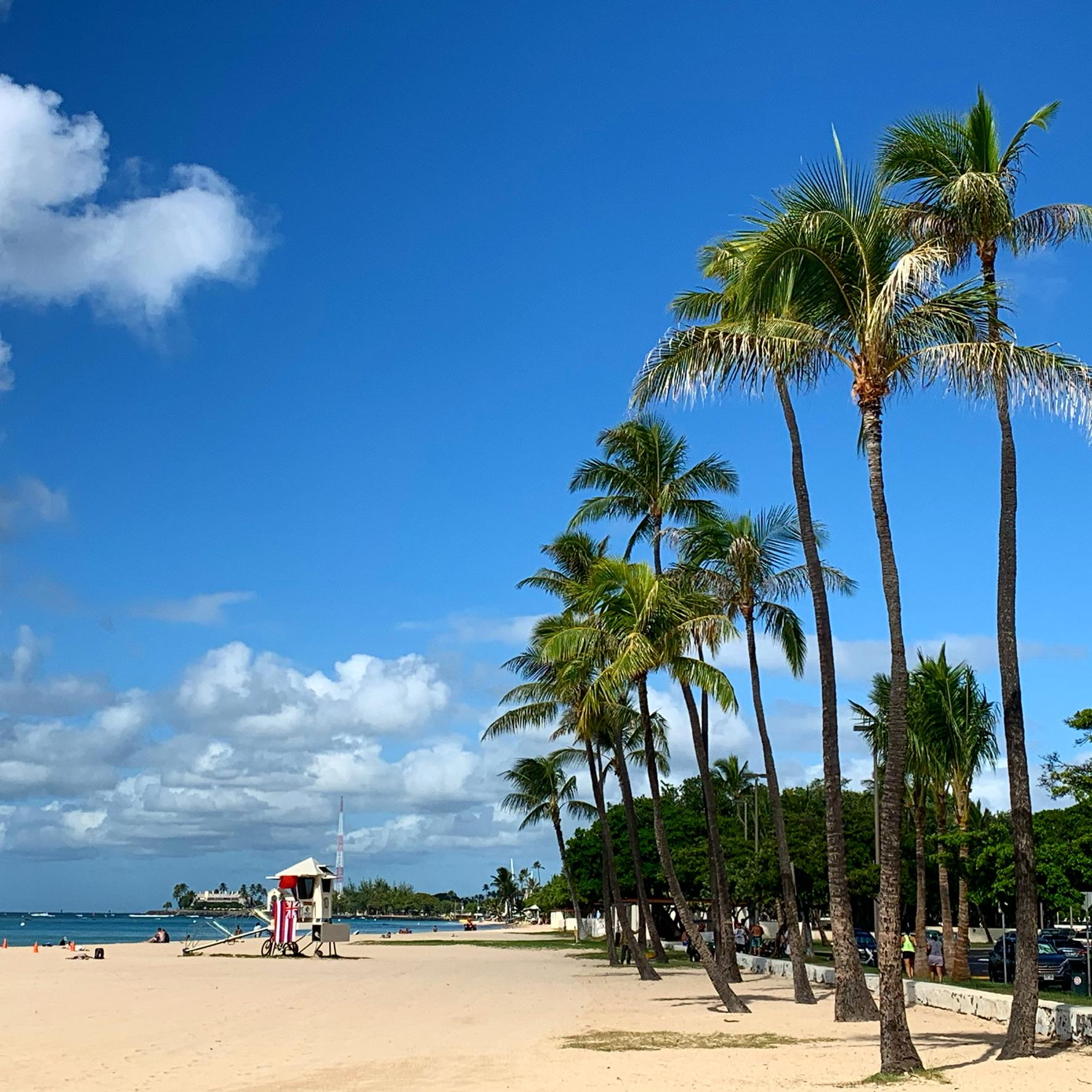 アラモアナビーチ2