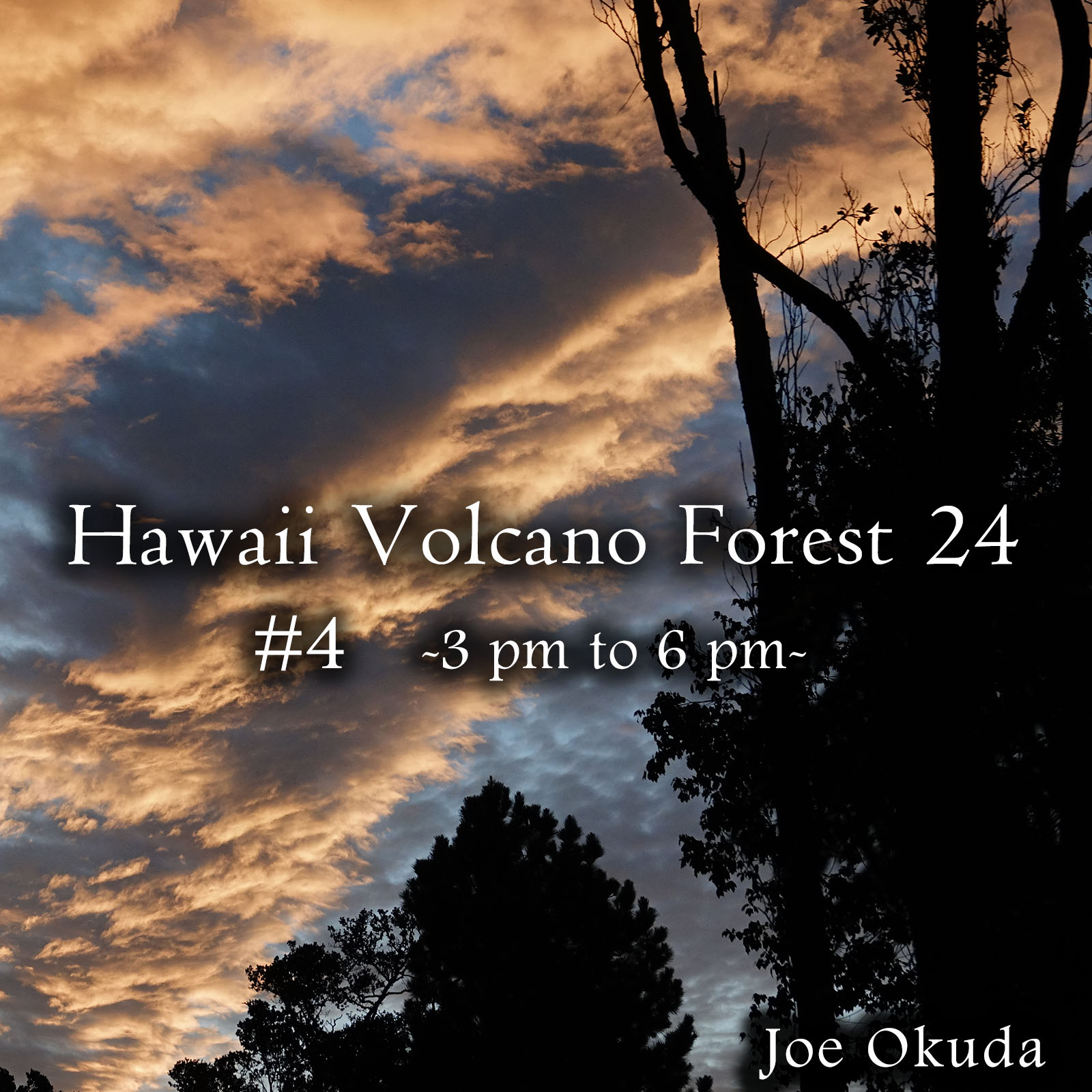 Hawaii Volcano Forest 24 #4 -03pm to 06pm- ('Normalize Volume' flag OFF Recommended)
