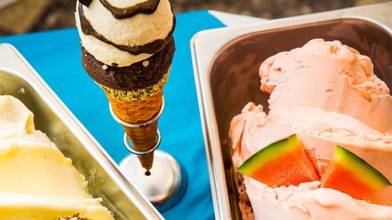 ロコが足しげく通うアイスクリーム店4選