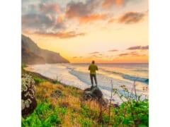 """今月の特集は、""""ハワイの自然音~Nature Sounds in Hawaii~スペシャル!"""""""