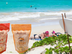 ホノルルで超有名!『Leis Hawaii popcorn kitchen』のポップコーン『ガーリックシュリンプ』と『ジャパニーズ・カレー』がLaniLani marketに登場!!!